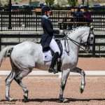 Adrienne Lyle Debuts Harmony's Duval at Grand Prix at Tryon